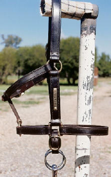 Draught Headstall