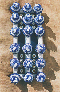 scottish stallion roller - Ribbon rosettes
